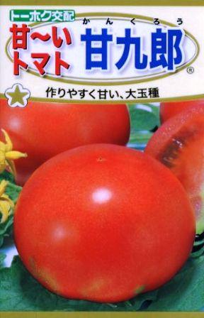 『 家庭菜園に向くトマトの品種を調べてみた 』 家庭菜園,トマト,品種,レッドオーレ,中玉とまと,..甘九郎は1玉250gにもなる大玉トマトの品種で種苗会社のトーホクさんが家庭菜園を念頭において品種改良をされました。..