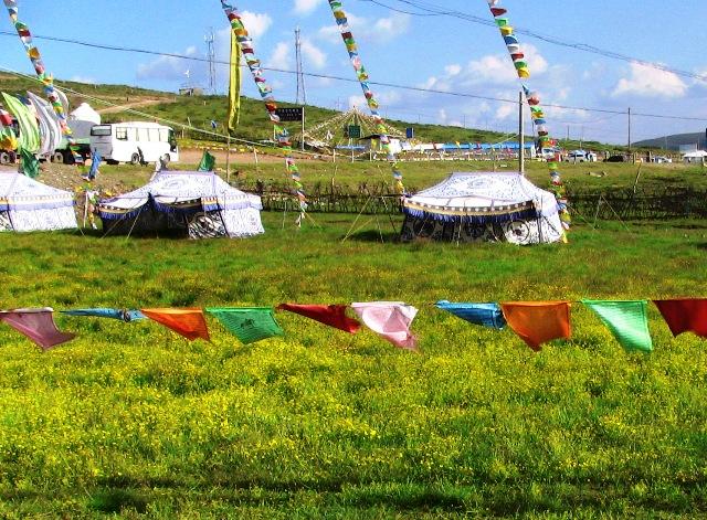 記事内容:【タイトル】 九賽溝,黄龍に向かう(1)について。【記事】「 尕力台(ガリタイ:ga li tai)草原は四川省の西北松潘県にあり,中国でも最も美しい草原の一つと云われています。」