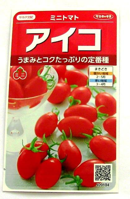『 ミニ トマト『アイコ』を種から栽培する記録 』 について、種から育てた記録を書き記しています。..アイコの特徴..