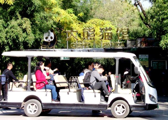 『 北京動物園のパンダはオリンピック広場で食う寝る遊ぶ三昧 』 ..ということで大熊猫パンダ館を後にしたのでした。..