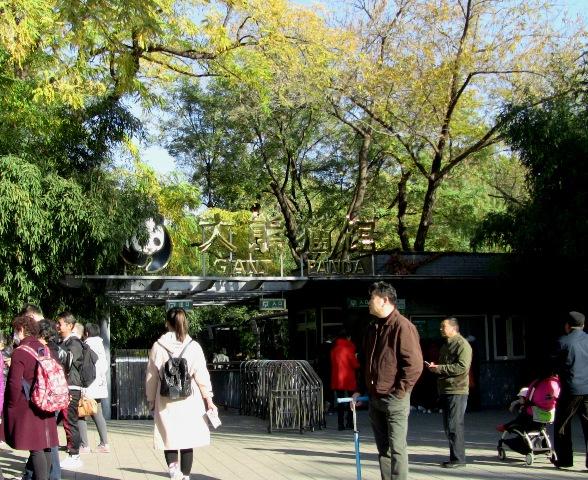 『 北京動物園のパンダはオリンピック広場で食う寝る遊ぶ三昧 』 ..パンダ館に向かって歩き…..
