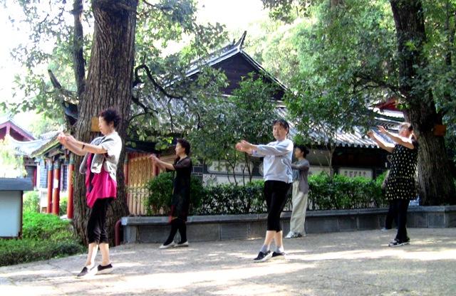 『 【麗江】黒龍澤公園(玉泉公園)で太極拳をマネてみた(^^; 』 ..一人で悠々のパフォーマンスは見事ですね。その近くでは少人数のグループが演技しています。..