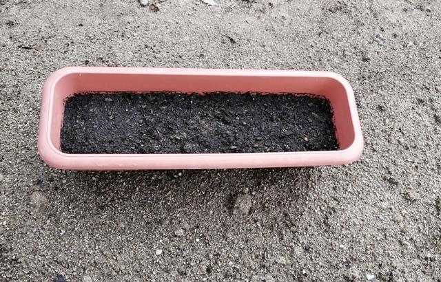 『 あさつき(浅葱)栽培-プランターに植え替えてみた 』 は春と秋に収穫でき、切りとってもすぐに新しい芽が伸びてきます。..ホームセンターで購入した培養土をプランターに入れます。培養土は牛糞と鶏糞をブレンドしました。..