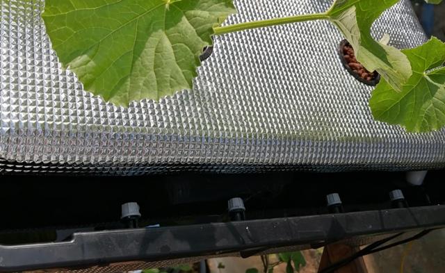 『 水耕栽培装置(噴霧式循環)の作り方 』 ..ホースの先端を温めボールペンの先端を差し込み広げた状態で差し込みました。 (^^;ノズルチエックは蓋を横にスライドして行います。..